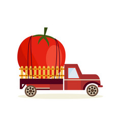 farming harvest concept with big ripe tomato in vector image