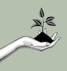 Female hand holding a handful soil vector