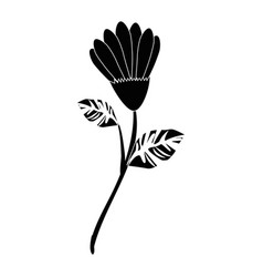 Flowers and leaves icon vector