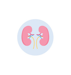 humans kidney icon in circle flat vector image