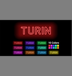 Neon name of turin city vector