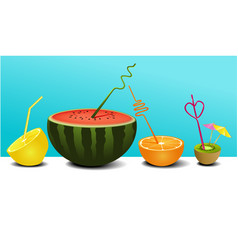 summer fruit juice vector image