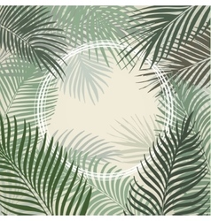 Hand drawn light green frame of palm leaves vector image vector image
