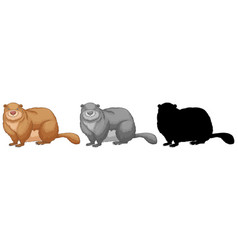 a set of beaver vector image