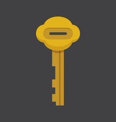 cartoon keys secret mystery vector image