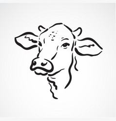 Cow head on white background farm animals vector