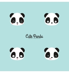 Cute panda faces vector image