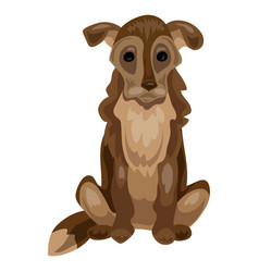 old dog icon cartoon style vector image
