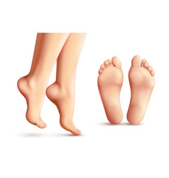 Realistic female feet set vector
