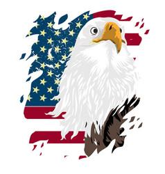 usa flag icon eagle icon vector image