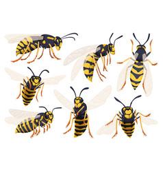 Wasp cartoon icon set collection vector
