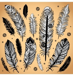 Fashion ethnic feather vector image