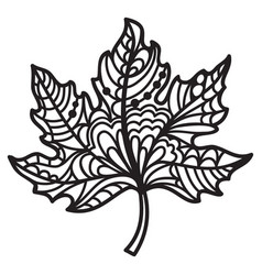 Zentangle maple leaf vector