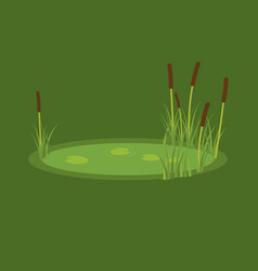 the marsh reeds and water vector image vector image