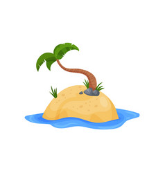 tropical island and palm tree vector image