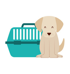 cute dog and pet cage vector image