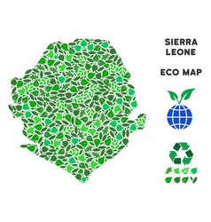 Ecology green composition sierra leone map vector