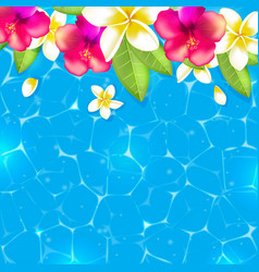Flowers in the water vector