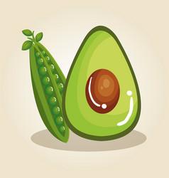fresh vegetables healthy food vector image