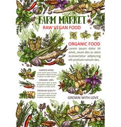 Garden herbs and spices seasonings vector