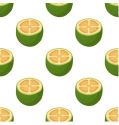 seamless pattern feijoa cartoon flat style vector image