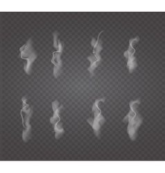 Set of transparent white smoke vector image