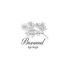 Boxwood plant branch greenery design element vector