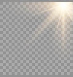 gold glowing sunlight effect vector image