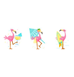 set cute pink flamingo drink cocktail carry vector image