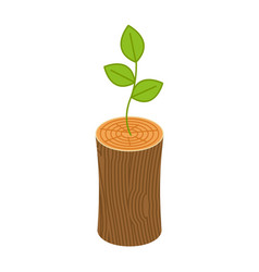 Sprout from logs new life concept young plant vector