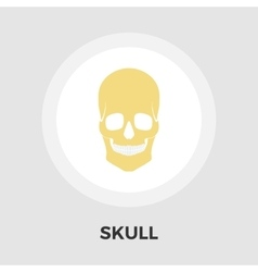 Anotomy skull flat icon vector image vector image