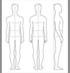 mens body measurements vector image vector image