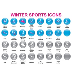 wintersports icons2 vector image vector image