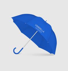 3d realistic render blue umbrella icon vector image