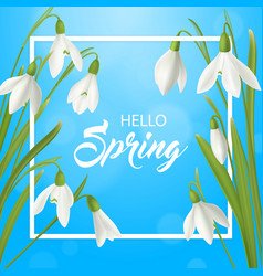 hello spring flowers poster vector image