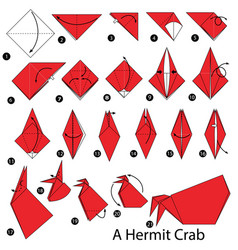 Instructions how to make origami a hermit crab vector