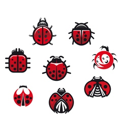 Ladybugs and ladybirds set vector