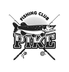 pike fishing emblem template with pike fish vector image