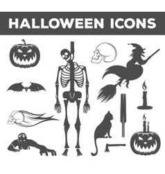 Set Halloween Icons Sign and Symbols vector