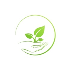 Hand holding plant logo growth concept vector image
