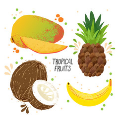 Hand draw set of tropical fruits - mango vector