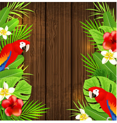 parrots on a wooden background vector image vector image