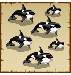 Set cute killer whales six icons vector