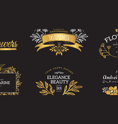 Set of gold luxury logos vector