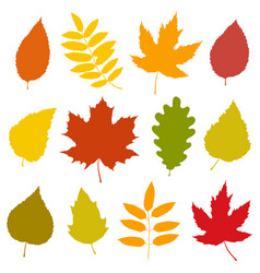 Set of isolated colorful autumn leaves silhouettes vector