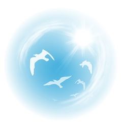 Sky with birds vector image
