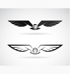 owl design on a white background bird vector image vector image