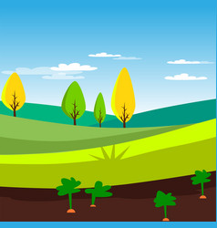rural landscape agriculture field with carrots vector image vector image