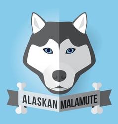 Alaskan malamute vector