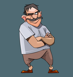 Cartoon mustached dissatisfied man stands with his vector